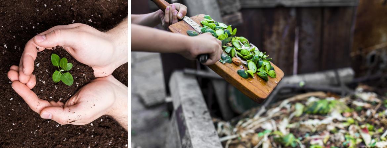 Compost en grondverbetering in Lier