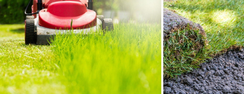 Voor een gazon (graszoden of gras zaaien) bent u bij Tuincentrum Kennes in Lier op het goede adres