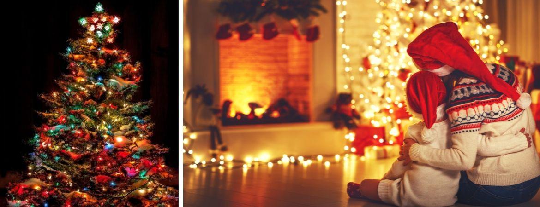 Koop uw kerstverlichting bij tuincentrum Kennes in Lier, nabij Antwerpen