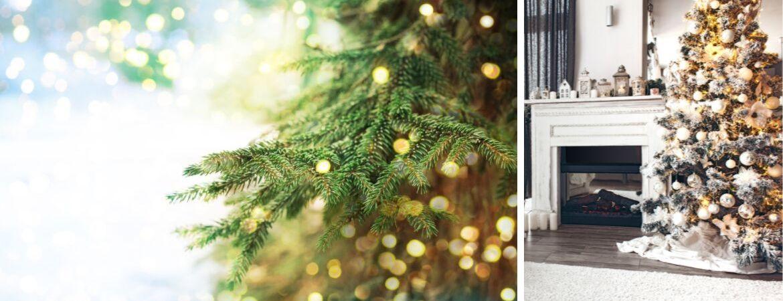 Kerstverlichting koopt u bij tuincentrum Kennes in Lier, nabij Antwerpen