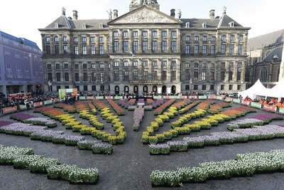 Nationale Tulpendag 2020