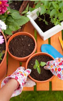 Tuin artikelen online bestellen | Tuincentrum Kennes