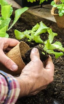 Tuin benodigdheden online bestellen | Tuincentrum Kennes