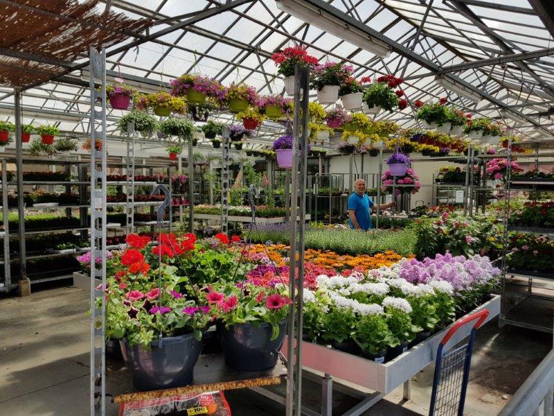 Tuincentrum nabij Kontich bezoeken?